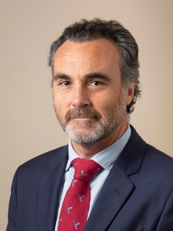David Páez Hernández